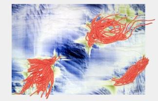 woolen wings